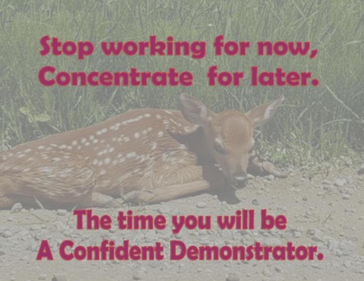 A Confident Demonstrator