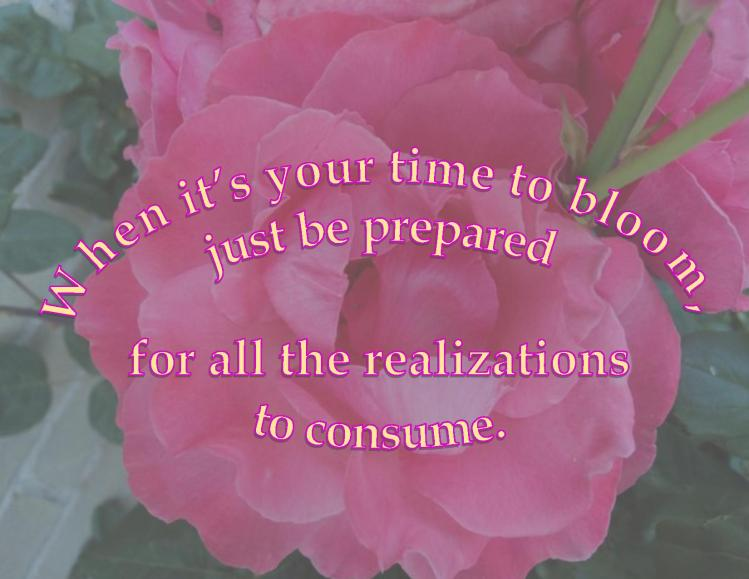 Time to Bloom