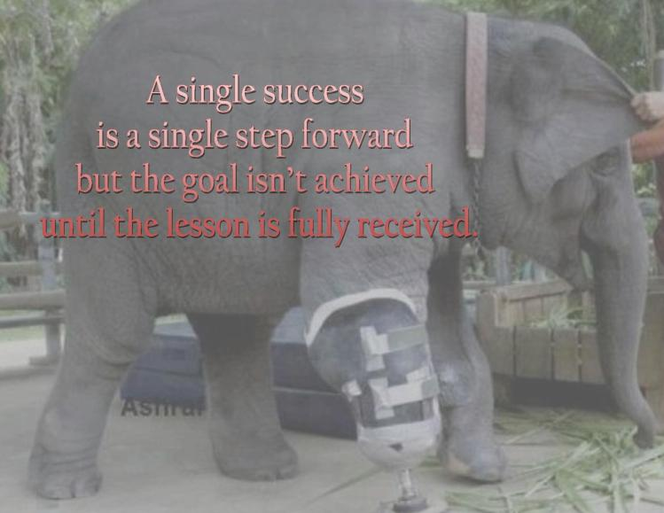 A Single Success