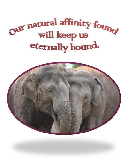 Our Natural Affinity