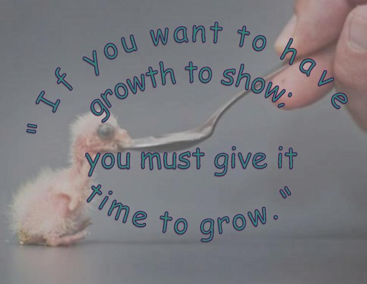 For Growth to Show
