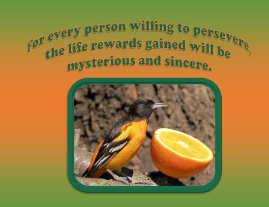 Willing to Persevere